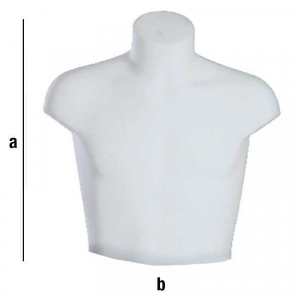 Mezzo torso uomo corto con spalla