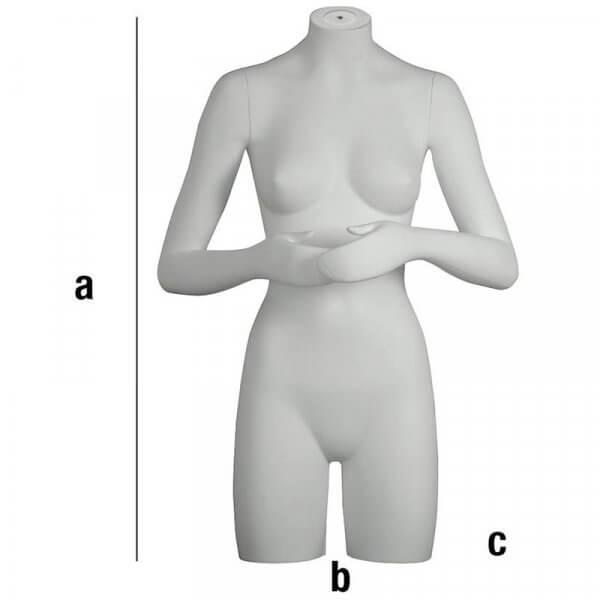 Busto di donna con braccia piegate