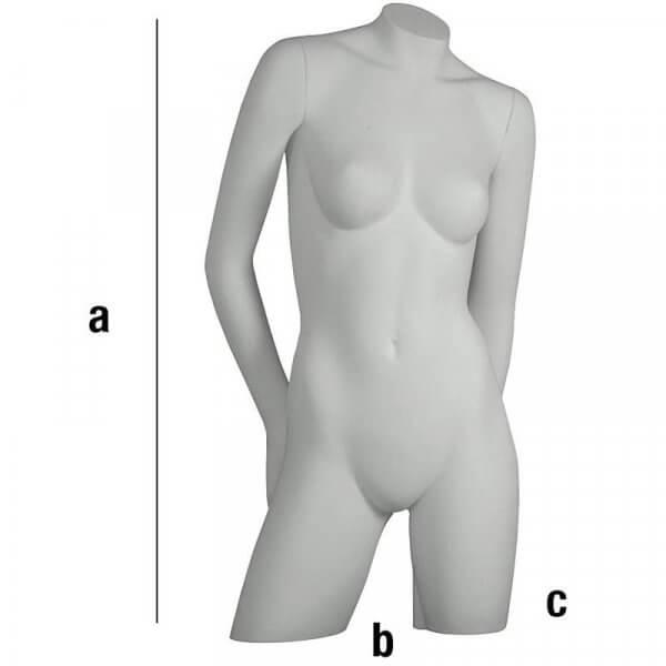 Busto di donna con braccia piegate dietro