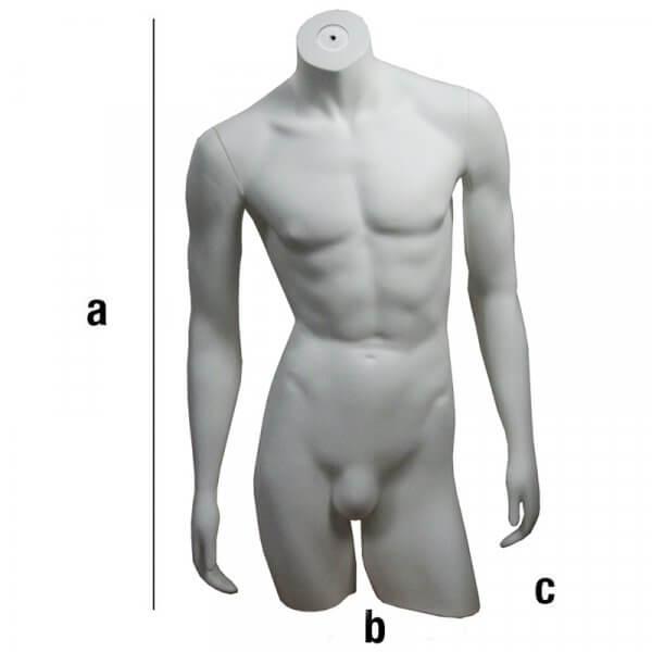 Busto di uomo con braccia dritte